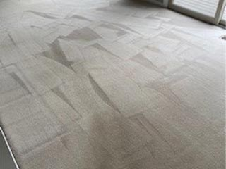 Cavalier Carpet Cleaning | cleaning dirty carpet