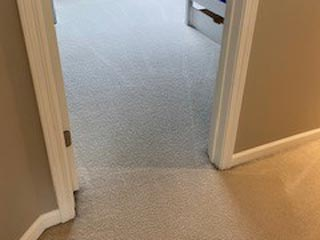 Cavalier Carpet Cleaning | clean carpet after
